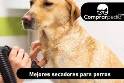 Mejores secadores para perros